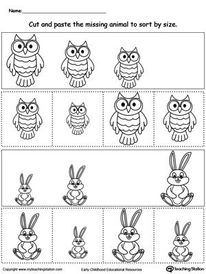 animal sorting by size owl and rabbit sorting categorizing worksheets kindergarten math. Black Bedroom Furniture Sets. Home Design Ideas