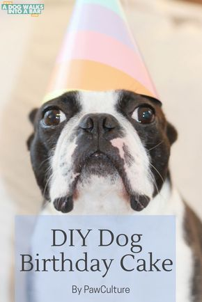 Learn how we celebrated our dog's birthday with a homemade dog birthday cake with a recipe from PawCulture.  We had a dog birthday party that we know you're going to love learning about.:
