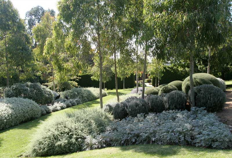 Formal country   Australian native garden, Sloped garden ...