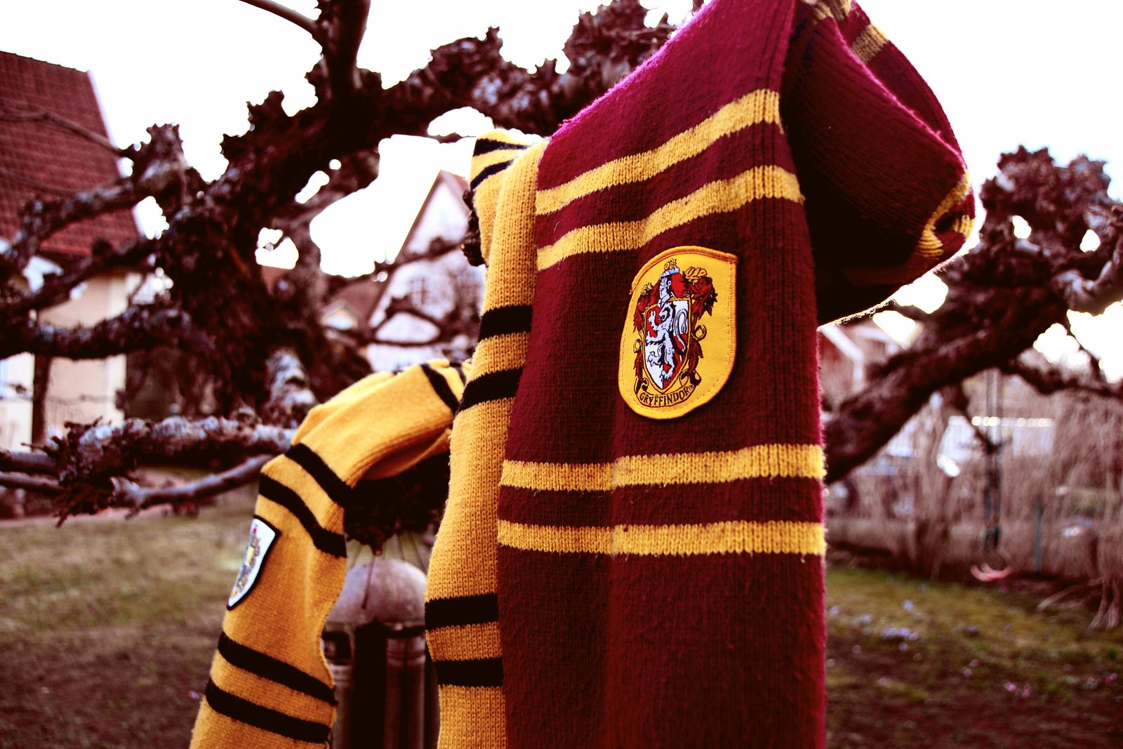 Gryffindor and Hufflepuff scarves