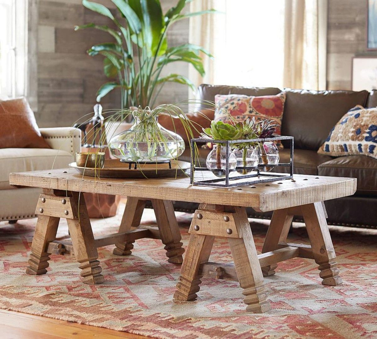 Pin by walaa aly on Indoor Plants & Arrangements Coffee