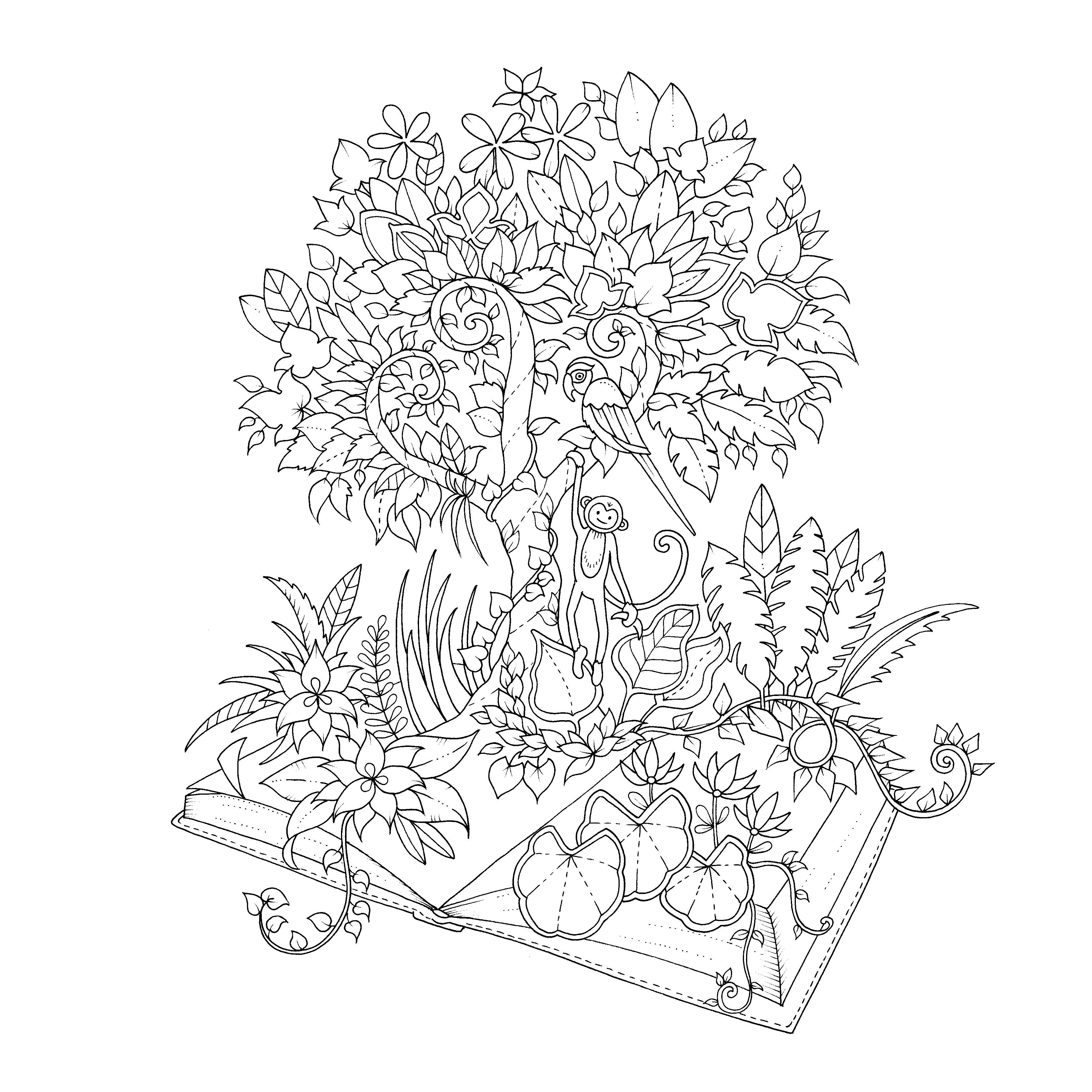 Johanna Basford Coloring Pages Magical Jungle Paginas Para