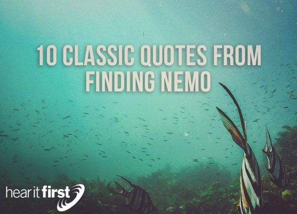 Finding Nemo Quotes Pin by Louise McClure on special olympics | Classic quotes, Quotes  Finding Nemo Quotes