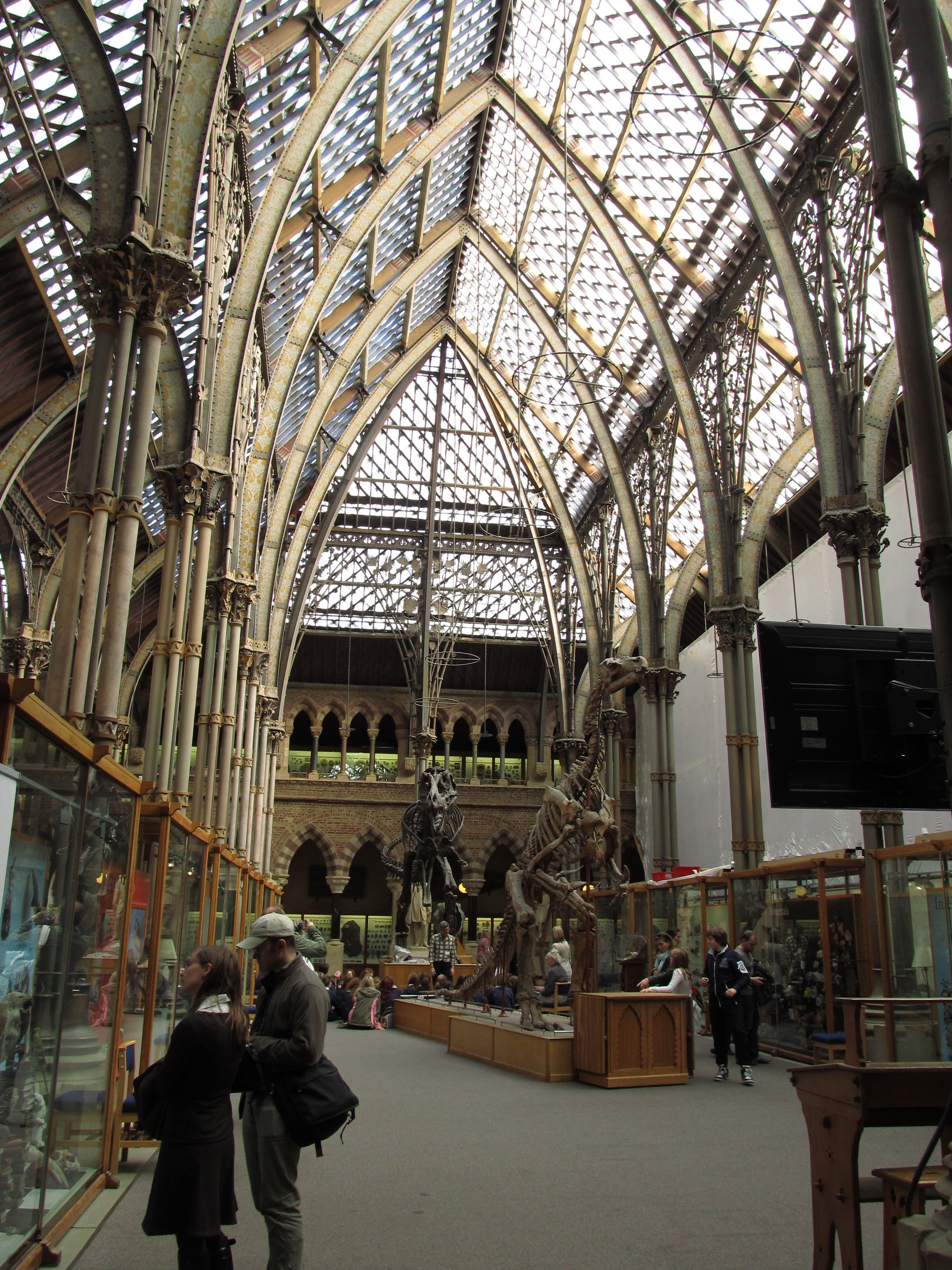 Genial Výsledek Obrázku Pro Oxford Museum Of Natural Science Architecture