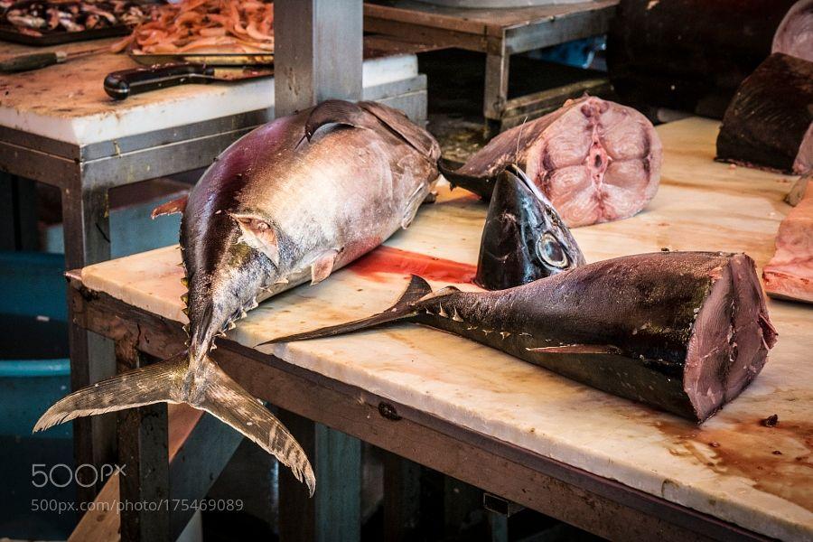 Pezzi di tonno by rapis60