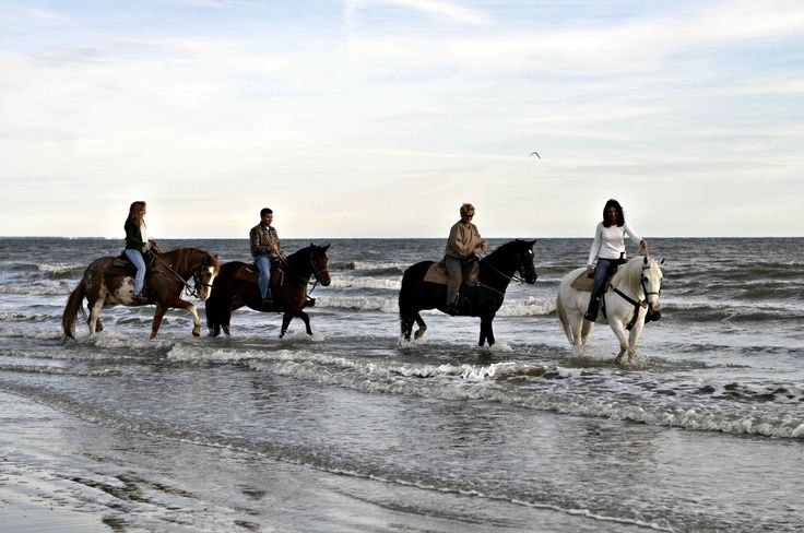 Cape san blas horseback ride the cape is one of the few