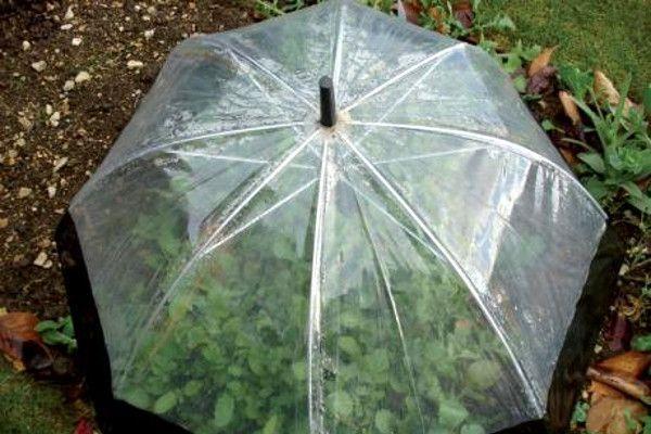 Riciclo creativo ombrelli: Ecco come potresti riciclare l'ombrello rotto. 15 idee…