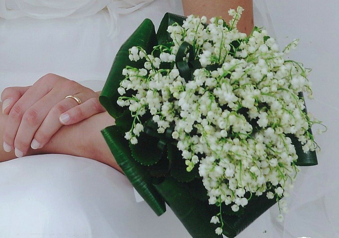 Contemporary Wedding Bouquet Of Classic Floral Ingredients: White Lily Of The Valley + Folded Green Aspidistra