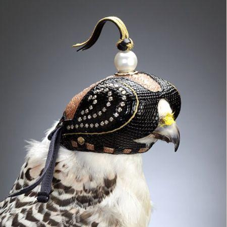 Diamond Falcon Hoods Falconry Falcon Hood Birds Of Prey