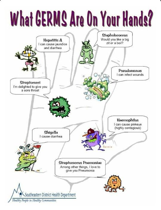 Germs Why You Should Wash Your Hands School Health Hand Hygiene School Nurse Office