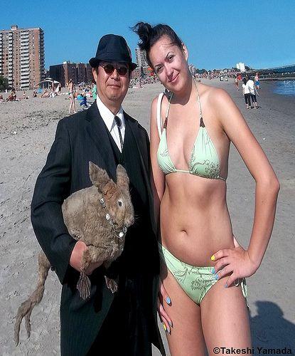 island coney bikini Illusions bar