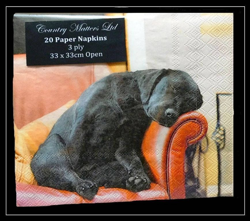 4 x single paper napkins, decoupage- craft- collage napkins, 33 x 33 cm , Sleeping Labrador, Lunch napkins, Tissue napkin, Scrap- booking