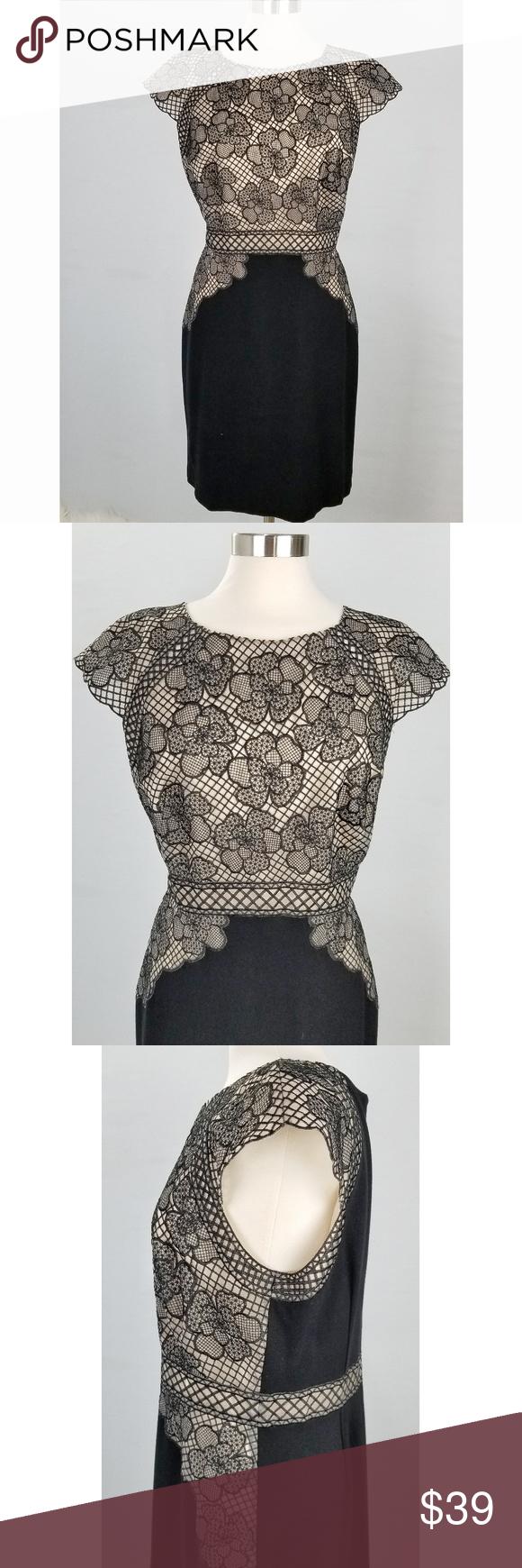 Antonio Melani Black Lace Cream Dress Size 14 Cream Cocktail Dresses Size 14 Dresses Cream Dress [ 1740 x 580 Pixel ]