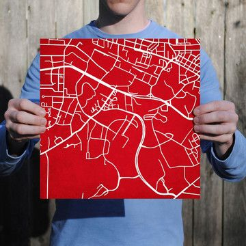What a neat idea for a graduate...a graphic map of NCSU ...