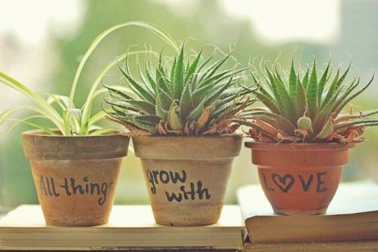 Unfortunately I can't keep plants alive, but it's a cute idea!