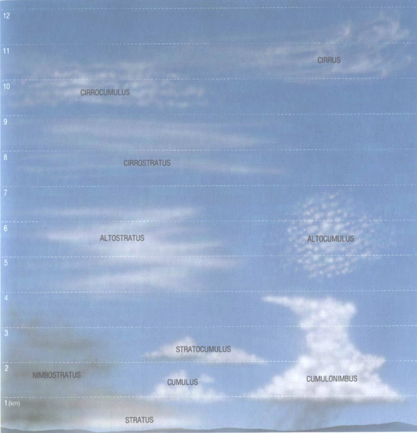 Cloud Chart
