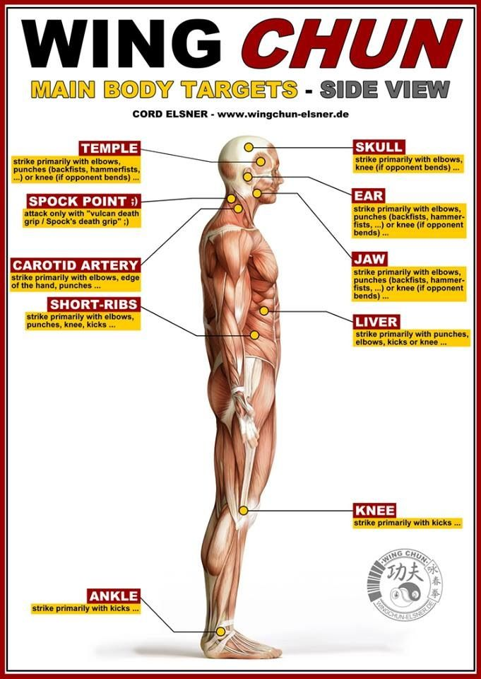 Pressure Points On The Body Martial Arts
