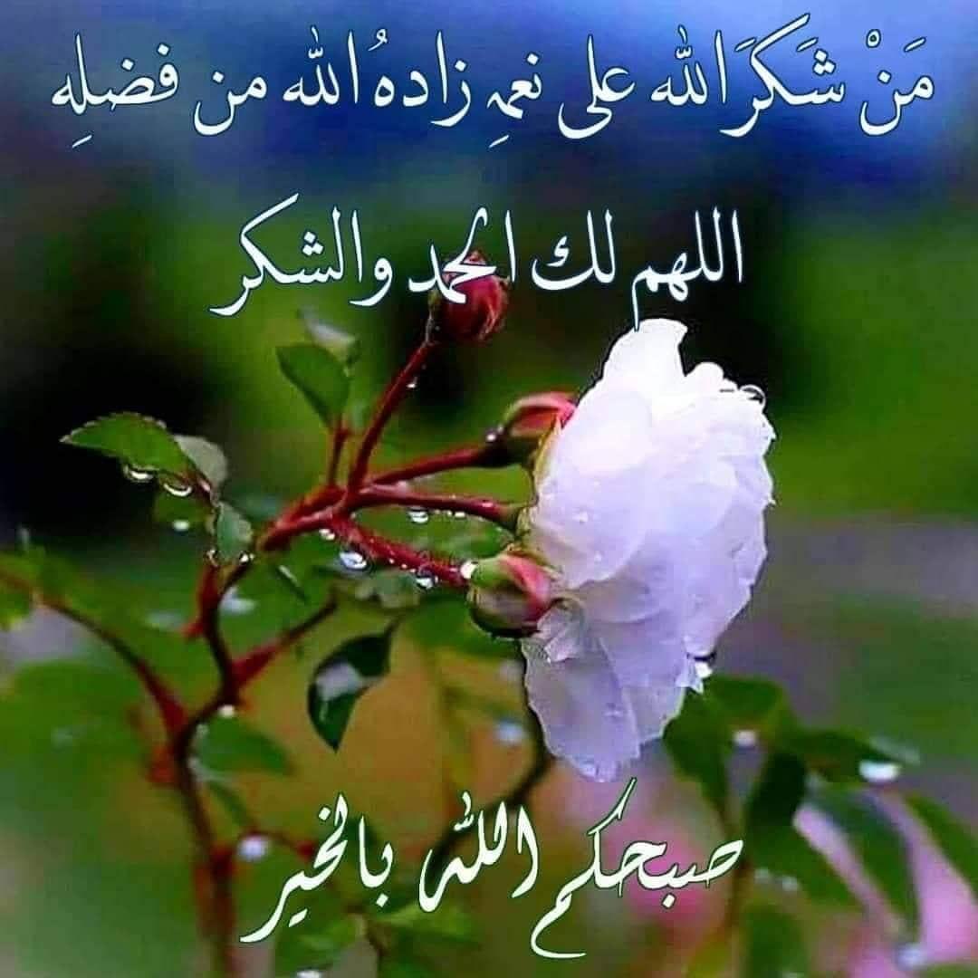 118 Likes 0 Comments ادعيه للوالد والوالده Ggg555ggg On Instagram Good Morning Images Flowers Beautiful Morning Messages Good Morning Arabic