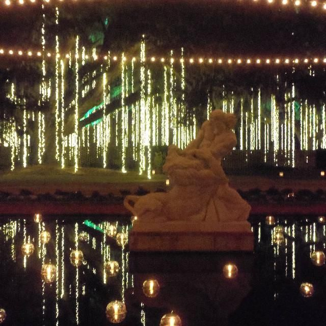 Candles And Light Reflections At Christmas Display At