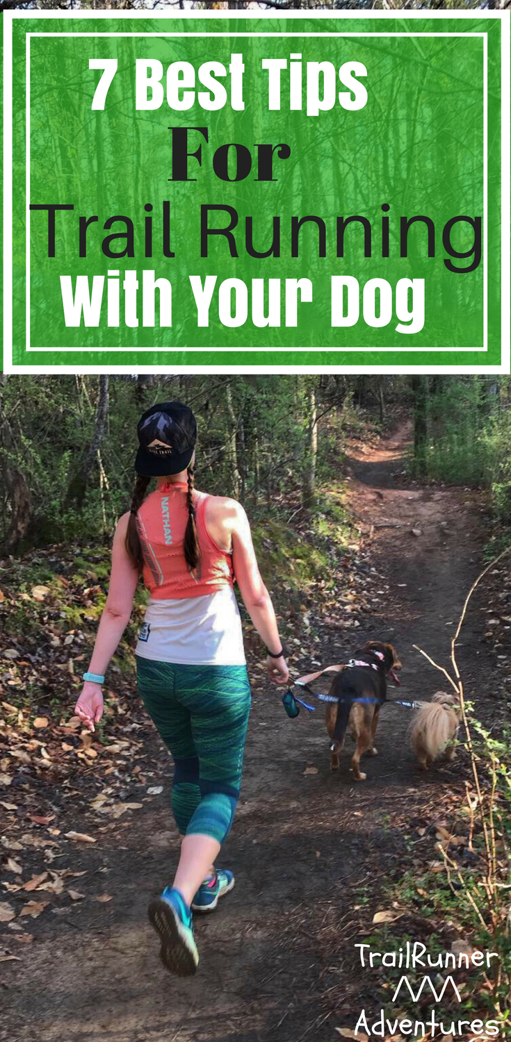Watch 7 Tips for Running with Your Dog video