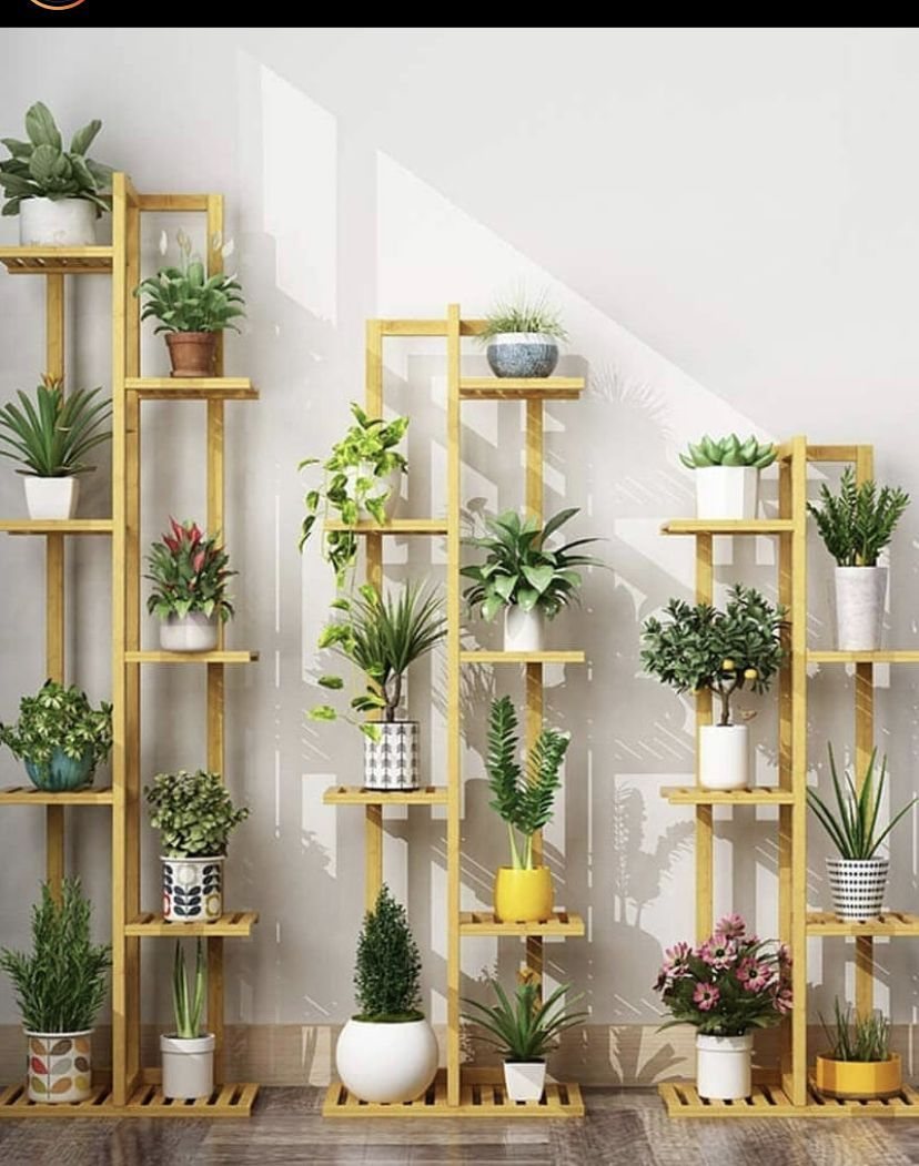 Love the wood plants stand look!