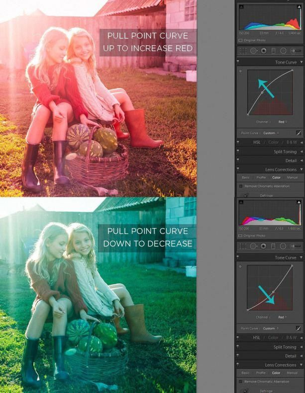 How to Use the Tone Curve in Lightroom  Pretty Presets for Lightroom