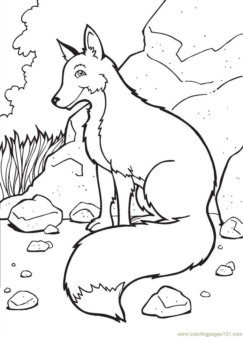 Fox coloring page  Free Printable Coloring Pages  Freebies