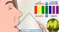 5 ingredientes para desintoxicar o seu corpo e equilibrar o pH do sangue em apenas 5 dias | Cura pela Natureza