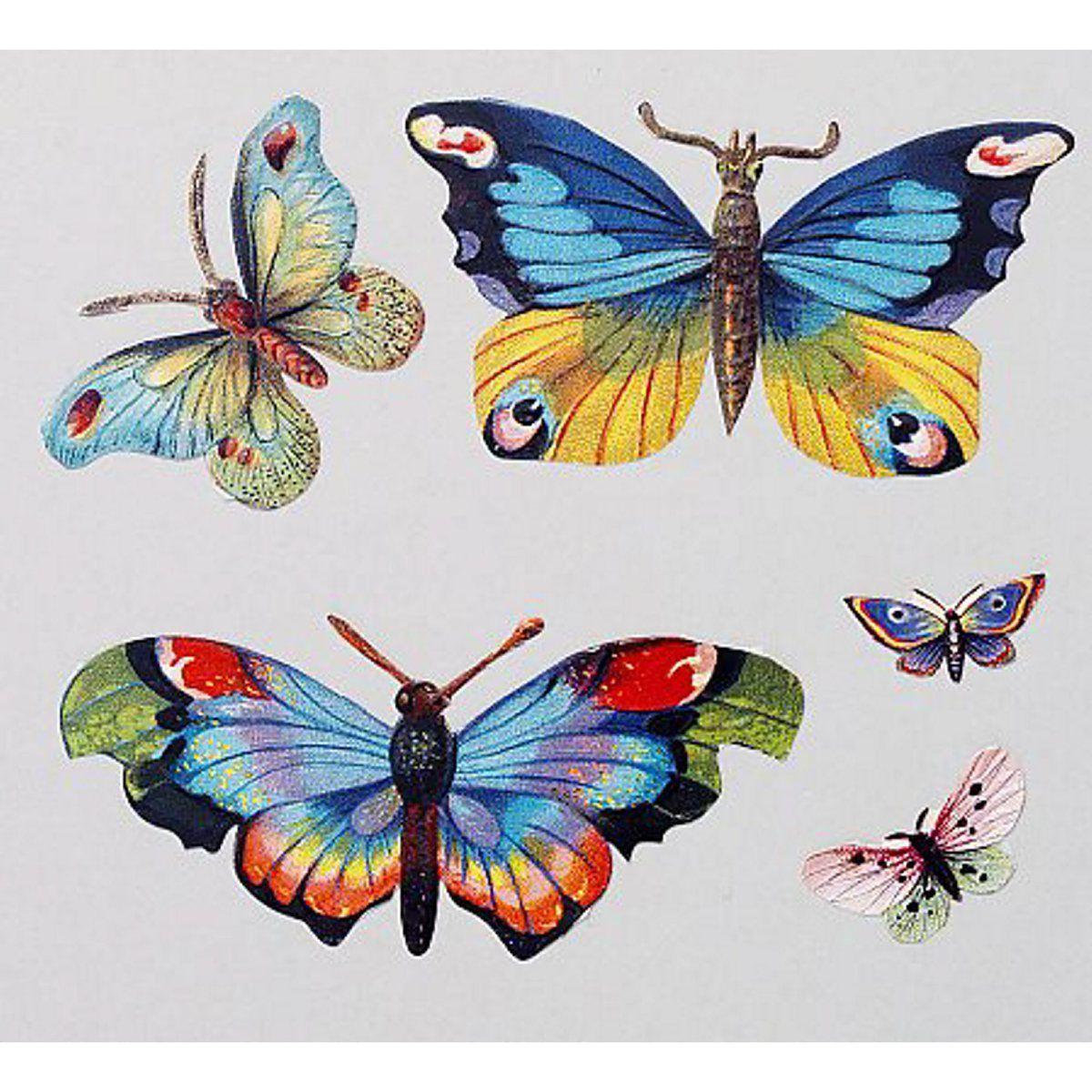 Panduro Hobby Glanzbilder Schmetterlinge Schmetterling Illustration Schmetterling Illustration Blume