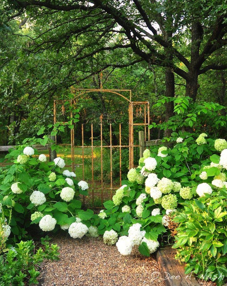 Summer Of Our Joy Garden Gates Garden Paths Garden