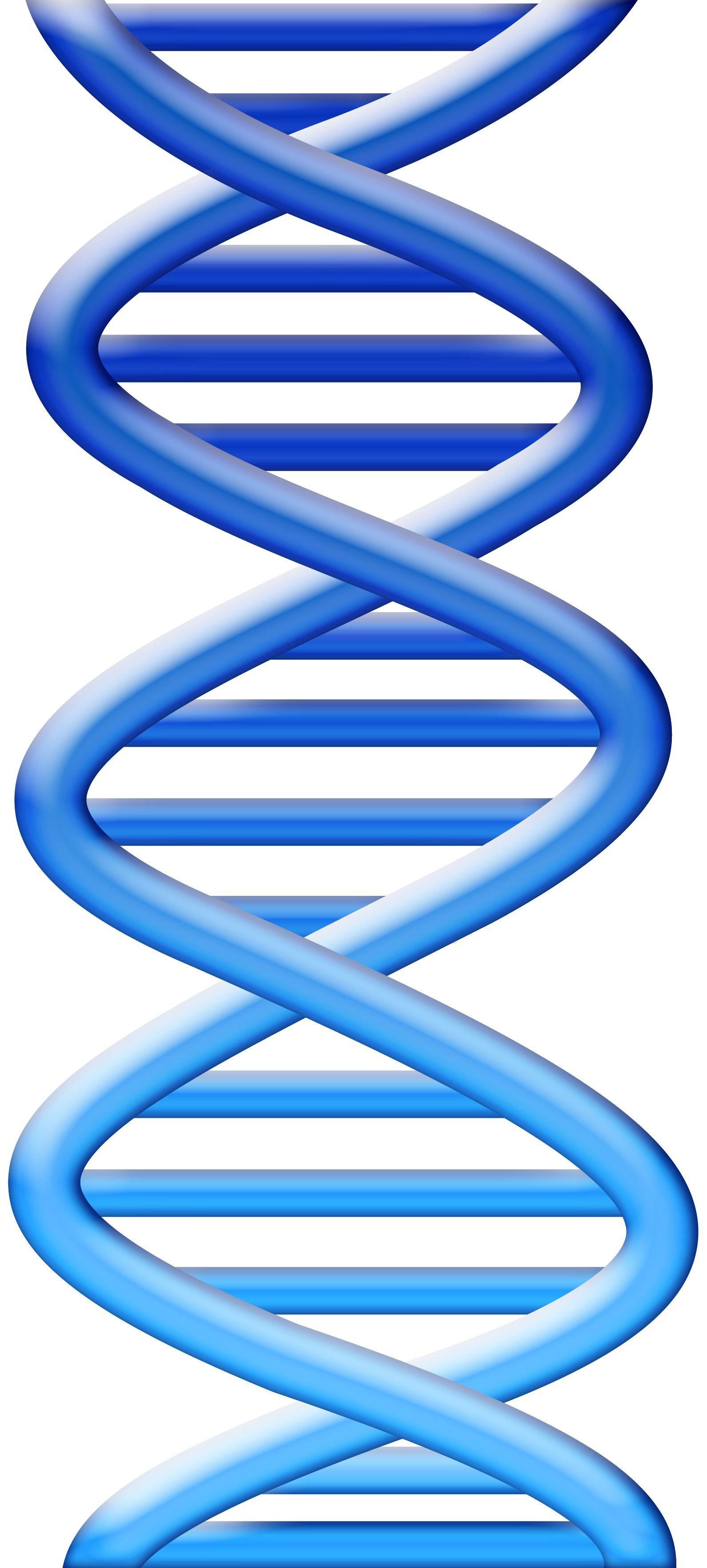 Image Result For Dna Art Blue Chemistry Graphics Pinterest