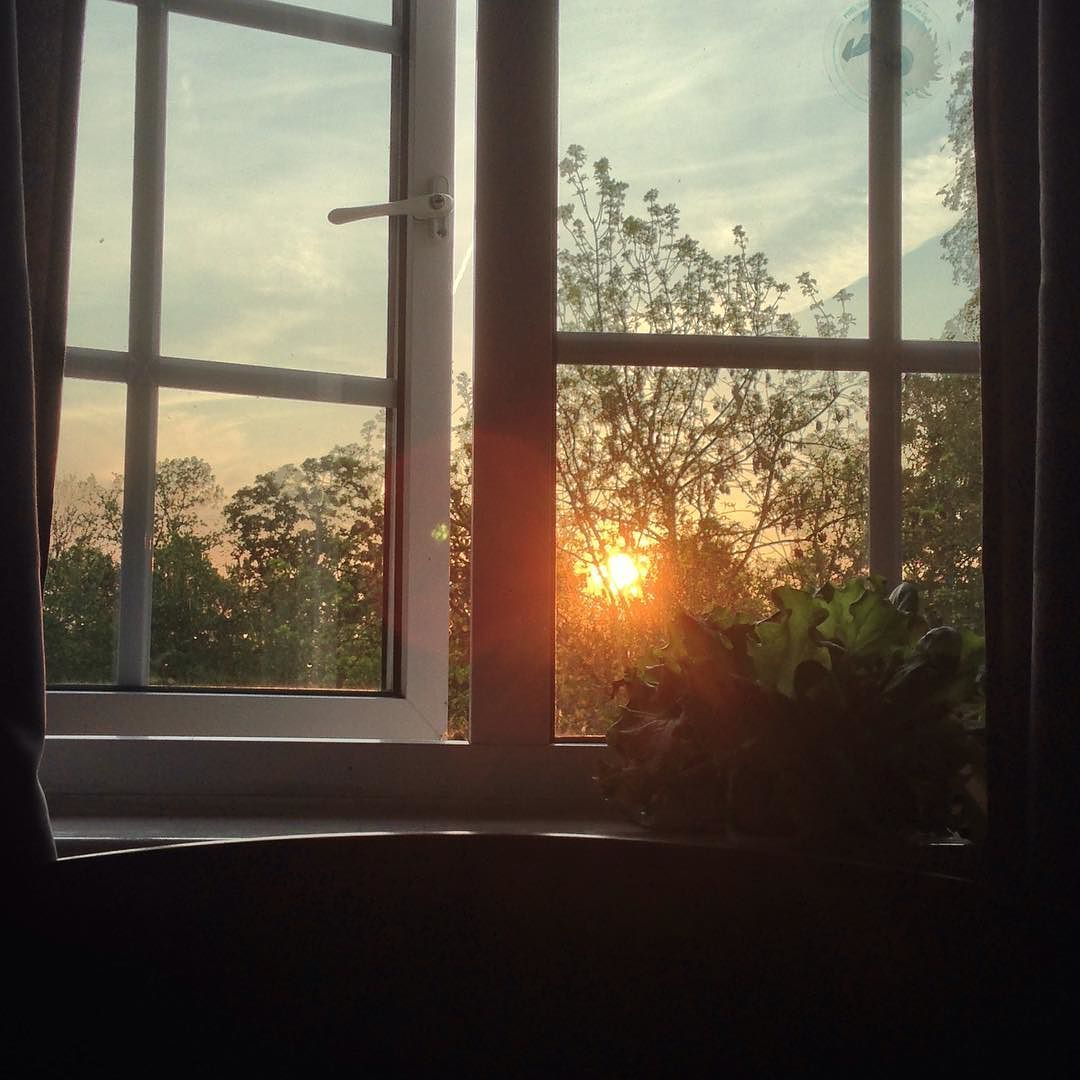 Our room faces west so every evening we get to watch the sun say goodnight to the beautiful British spring days through our window by caston7001