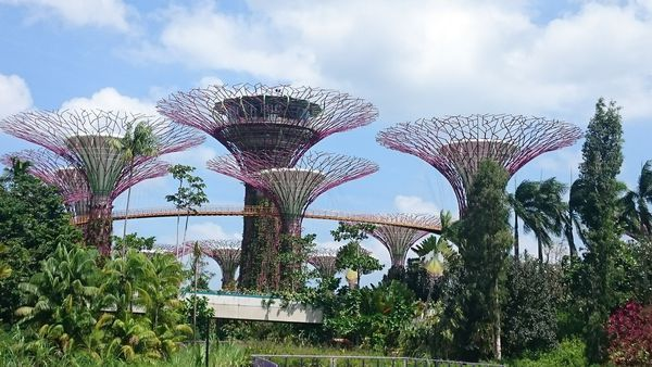 e7c8447650b21633b8c36862eaeb283f - Gardens By The Bay Singapore Nearest Mrt Station