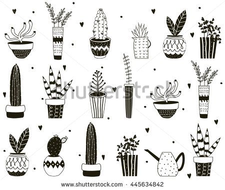 Butterfly Vine besides Handdrawn Succulents And Cactus Doodle Pattern T further Wel e To Our Nest moreover 31679111ce06af9f House Descriptions Real Estate House Plan Description further Floral Arr. on green wallpaper designs for home html