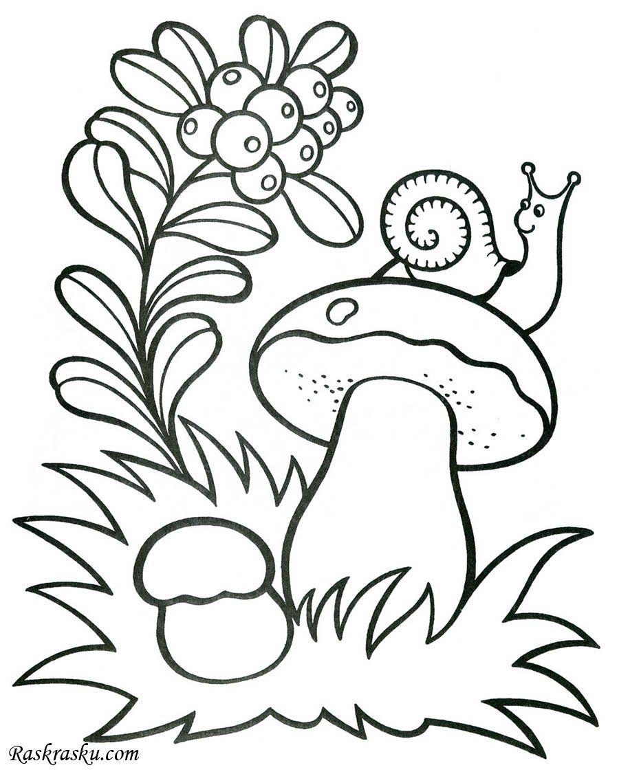 Раскраска Улитка на грибе скачать и распечатать бесплатно ...