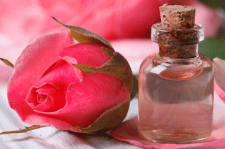What Are The Benefits Of Rose In Bengali গ ল প র উপক র ত Rose Download Rose Information Rose Pictures Rose Rose Water Benefits Rose Water Strawberry Legs