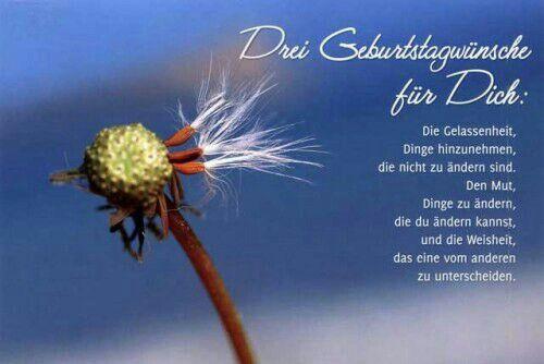 Geburtstag Geburtstagswunsche Spruche Geburtstag Wunsche Spruche Zum 40 Geburtstag