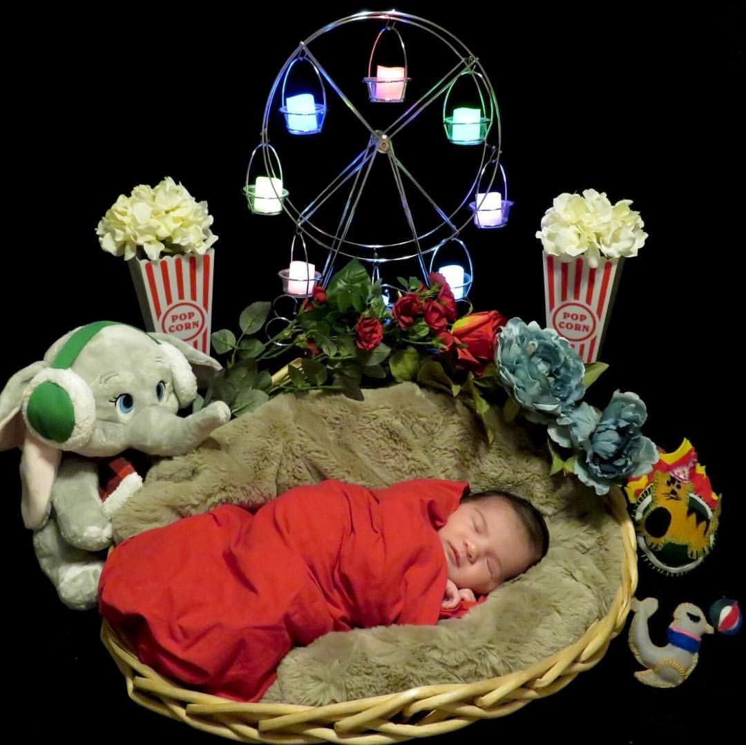 Newborn baby photoshoot idea disney diy dumbo circus theme