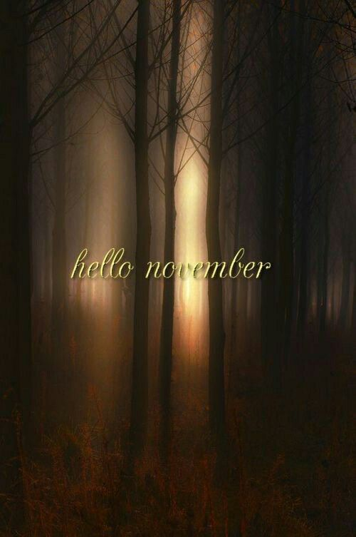 Hello November #hellonovemberwallpaper Hello November #hellonovemberwallpaper Hello November #hellonovemberwallpaper Hello November #hellonovembermonth