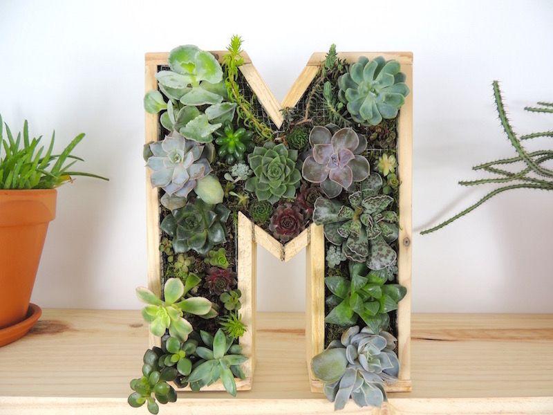 DIY Comment créer un cadre végétal déco et original en forme de