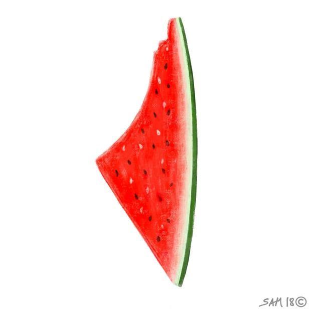 Watermelon   Jaffa-born artist Sami Boukhari (@sammhary on Instagram) drew inspiration from Khaled Hourani's work. Courtesy the artist