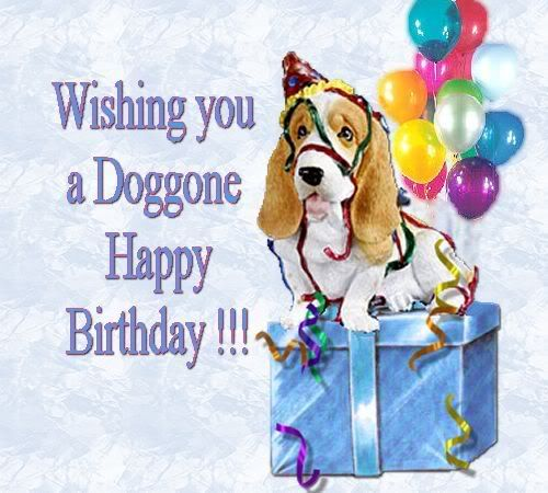 Happy Birthday Dog Quotes ~ Happy birthday dog lover nugget
