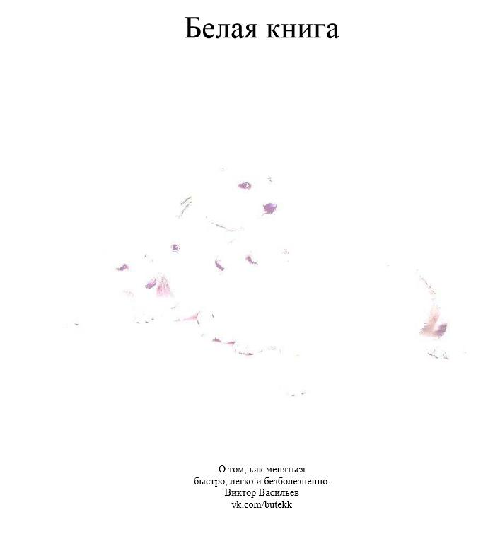Скачать белая книга васильев