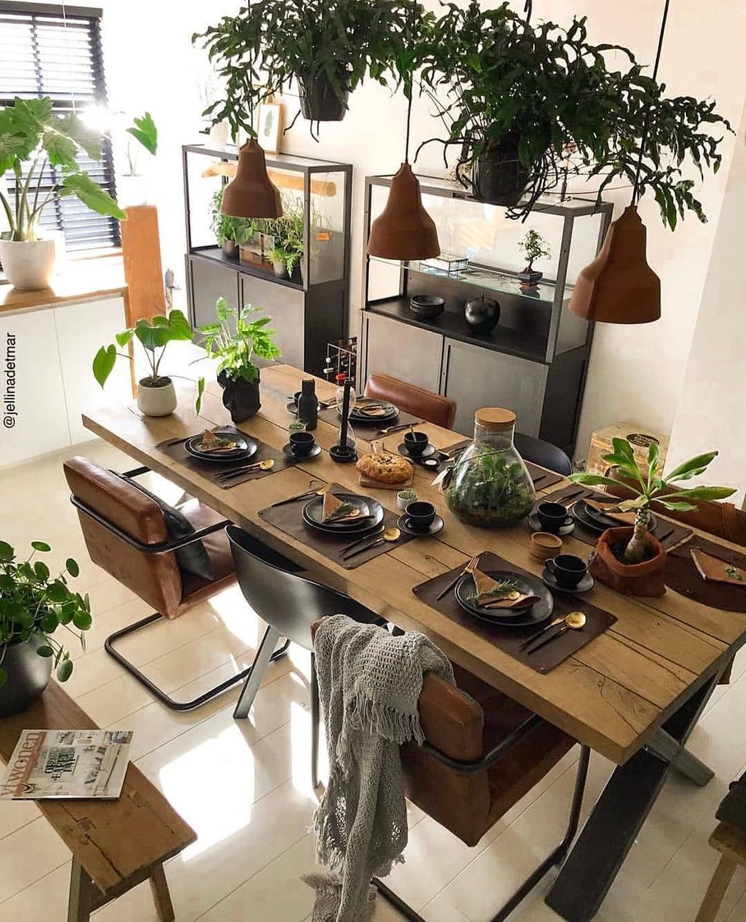 Cheap Indoor Plants You Can Buy Online Dinning Table Design Dining Table Design Budget Home Decorating
