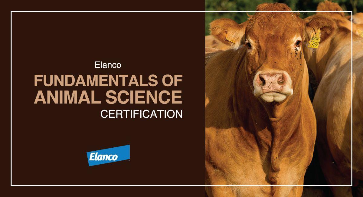 Elanco Fundamentals of Animal Science Certification | Animal science,  Science, Animals