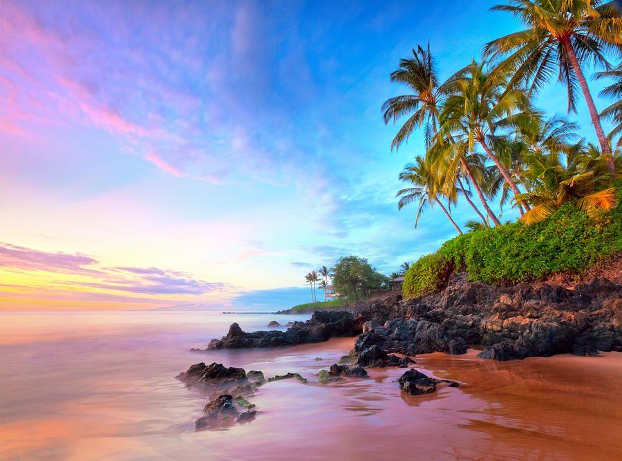 Purple Dreams By Michael Swiet Beach Wallpaper Maui Travel