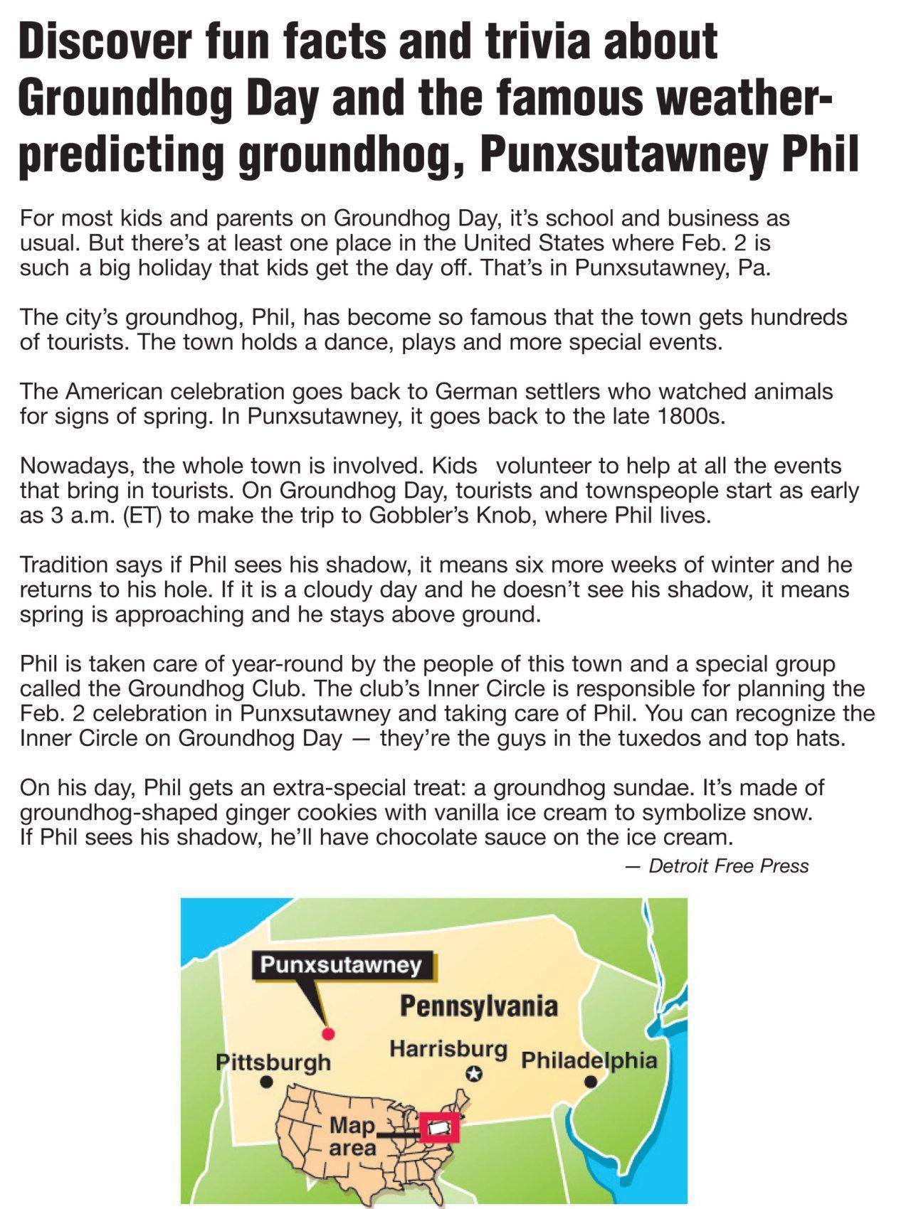 Punxsutawney Phil With Images