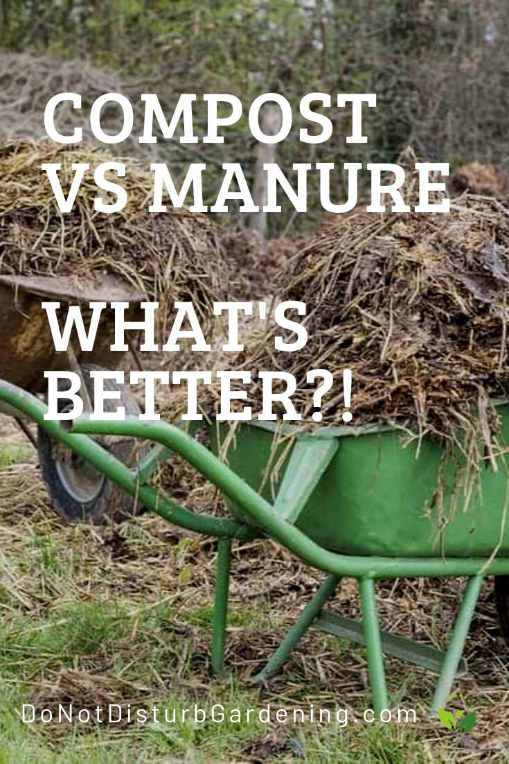 e7cef2516a0f30bebb5382ab88fbf9bf - What's The Best Manure For Vegetable Gardens