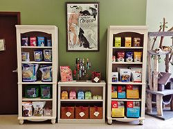 Attractive Veterinary Retail Space At T L C Animal Hospital