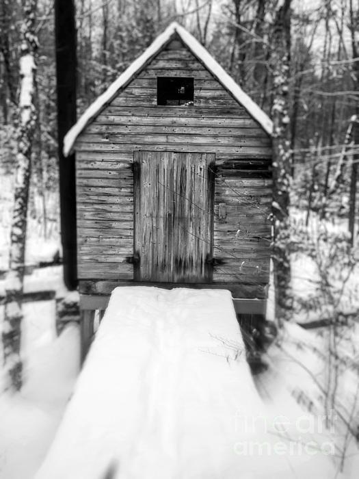 Gruselige Hütte im Wald von Edward Fielding in 2020 (With